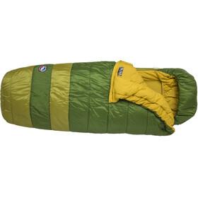 Big Agnes Echo Park -20 Sleeping Bag Wide Long green/olive